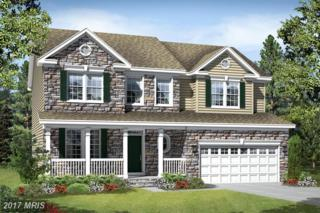 Yeager Court, New Market, MD 21774 (#FR9843265) :: Pearson Smith Realty