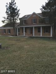 4401 Red Rose Court, Middletown, MD 21769 (#FR9845468) :: LoCoMusings