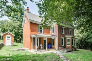 2405 Old National Pike, Middletown, MD 21769 (#FR9846109) :: Pearson Smith Realty