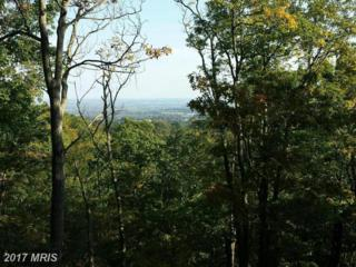 Sabillasville Road, Thurmont, MD 21788 (#FR9848053) :: Pearson Smith Realty