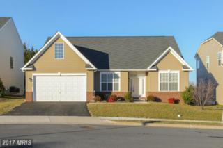 1105 Wilcox Court, Frederick, MD 21702 (#FR9849666) :: LoCoMusings