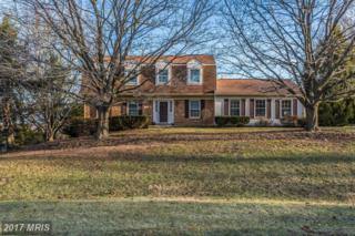 13586 Old Annapolis Court, Mount Airy, MD 21771 (#FR9851580) :: Pearson Smith Realty
