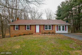5772 Catoctin Vista Drive, Mount Airy, MD 21771 (#FR9851989) :: LoCoMusings