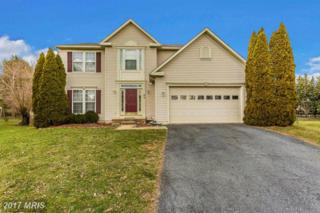 98 Cumberland Court, Frederick, MD 21702 (#FR9852929) :: LoCoMusings