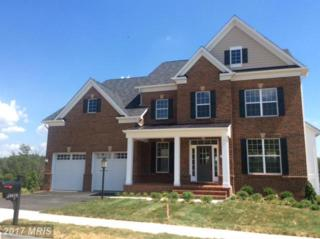 Dresden Place, Frederick, MD 21701 (#FR9860107) :: Pearson Smith Realty