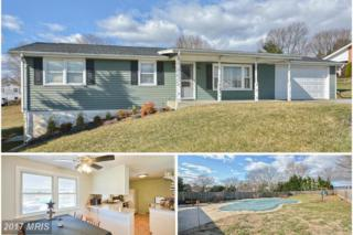 7404 Picnic Woods Road, Middletown, MD 21769 (#FR9860534) :: Pearson Smith Realty