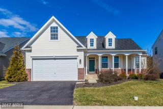 1131 Wilcox Court, Frederick, MD 21702 (#FR9862167) :: Pearson Smith Realty
