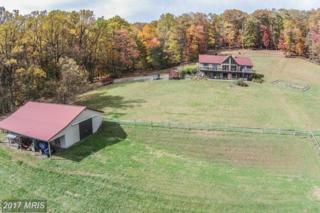 9528 Bethel Road, Frederick, MD 21702 (#FR9864241) :: Pearson Smith Realty