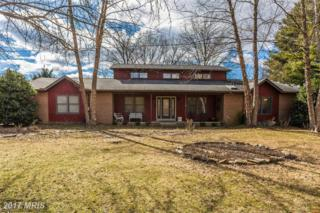 6730-A Deer Spring Lane, Middletown, MD 21769 (#FR9864590) :: Pearson Smith Realty
