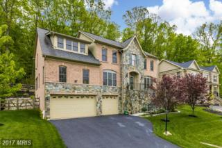 6708 Box Turtle Court, New Market, MD 21774 (#FR9865051) :: LoCoMusings