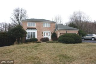 7847 Talbot Run Road, Mount Airy, MD 21771 (#FR9865831) :: Charis Realty Group