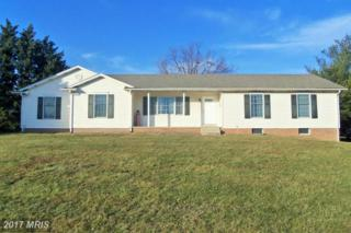 8209 Lookout Lane, Frederick, MD 21702 (#FR9866469) :: LoCoMusings