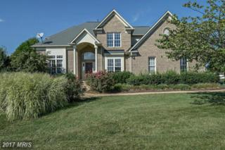 11434 Drummers Pass, Ijamsville, MD 21754 (#FR9867266) :: Pearson Smith Realty
