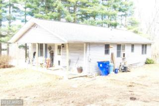 14541 Old Catoctin Road, Smithsburg, MD 21783 (#FR9867419) :: Pearson Smith Realty