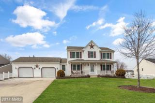 204 Ironmaster Drive, Thurmont, MD 21788 (#FR9868644) :: Pearson Smith Realty