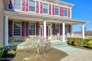 13904 Mitchell Court, Mount Airy, MD 21771 (#FR9872562) :: LoCoMusings