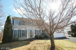 2196 Mountainview Drive, Frederick, MD 21702 (#FR9878734) :: Pearson Smith Realty