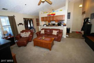 605 Himes Avenue #110, Frederick, MD 21703 (#FR9879980) :: LoCoMusings