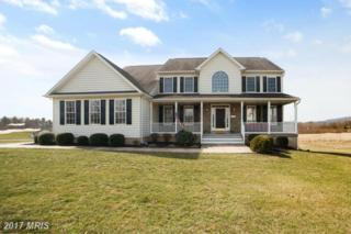 2403 Bidle Road, Middletown, MD 21769 (#FR9881583) :: Pearson Smith Realty