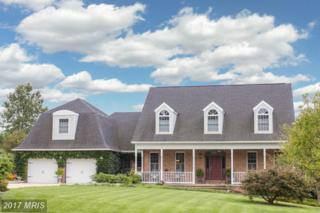 4605 Basset Place, Middletown, MD 21769 (#FR9882690) :: LoCoMusings
