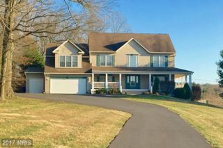 11701 Weller Hill Drive, Monrovia, MD 21770 (#FR9886667) :: LoCoMusings