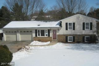 13988 Annapolis Court W, Mount Airy, MD 21771 (#FR9890465) :: LoCoMusings
