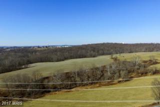 Big Woods Road, Ijamsville, MD 21754 (#FR9891028) :: LoCoMusings