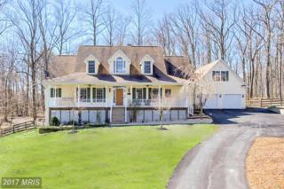 7532 Talbot Run Road, Mount Airy, MD 21771 (#FR9891084) :: Pearson Smith Realty