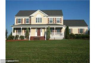 4421 Moleton Court, Mount Airy, MD 21771 (#FR9892674) :: Pearson Smith Realty