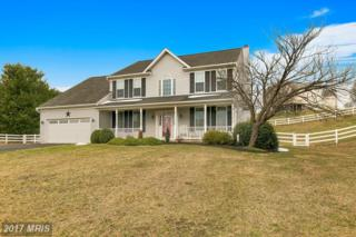 4106 Vickie Lynn Court, Mount Airy, MD 21771 (#FR9893884) :: Pearson Smith Realty