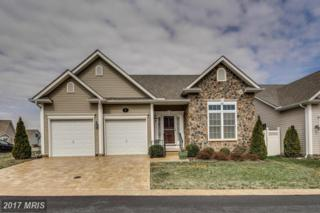 2 Stine Court, Middletown, MD 21769 (#FR9894274) :: Pearson Smith Realty