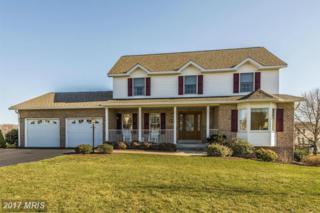 213 Bennett Court, Thurmont, MD 21788 (#FR9894565) :: Pearson Smith Realty