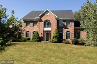 11008 Gray Marsh Place, Ijamsville, MD 21754 (#FR9903547) :: Pearson Smith Realty