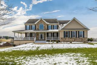 2405 Bidle Road, Middletown, MD 21769 (#FR9906848) :: Pearson Smith Realty