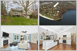 6621 Coldstream Drive, New Market, MD 21774 (#FR9907544) :: Pearson Smith Realty