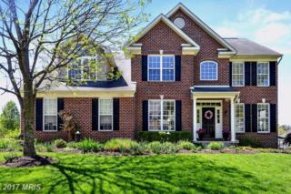 5700 Haycock Court, Frederick, MD 21704 (#FR9908955) :: Pearson Smith Realty