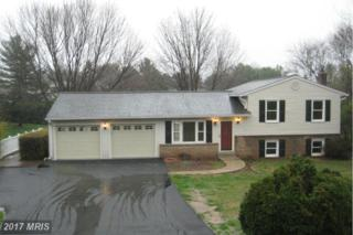 13988 Annapolis Court W, Mount Airy, MD 21771 (#FR9909066) :: Pearson Smith Realty
