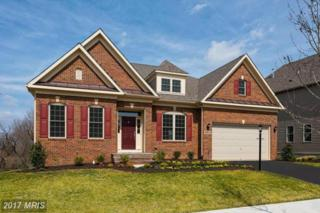 10883 Patina Row Way, Monrovia, MD 21770 (#FR9911288) :: Pearson Smith Realty
