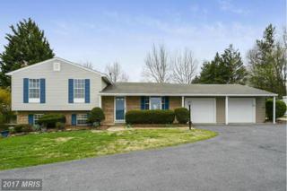 5735 Mountville Road, Adamstown, MD 21710 (#FR9912620) :: Pearson Smith Realty