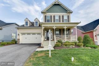 1158 Dargon Quarry Lane, Brunswick, MD 21716 (#FR9912630) :: Pearson Smith Realty