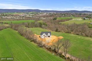Lot 4 Bidle Rd, Middletown, MD 21769 (#FR9912791) :: Pearson Smith Realty