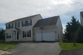 13453 Four Seasons Court, Mount Airy, MD 21771 (#FR9913737) :: LoCoMusings