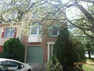 8029 Hollow Reed Court, Frederick, MD 21701 (#FR9918040) :: Pearson Smith Realty