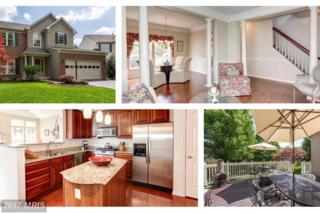 1747 Algonquin Road, Frederick, MD 21701 (#FR9918067) :: Pearson Smith Realty