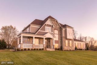 10390 Springside Terrace, Ijamsville, MD 21754 (#FR9919671) :: Pearson Smith Realty