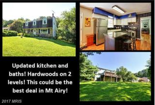 4217 Bill Moxley Road, Mount Airy, MD 21771 (#FR9920134) :: Pearson Smith Realty