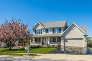 14 Ali Drive, Middletown, MD 21769 (#FR9920435) :: Pearson Smith Realty