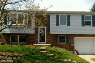 910 Horizon Road, Mount Airy, MD 21771 (#FR9924858) :: Pearson Smith Realty