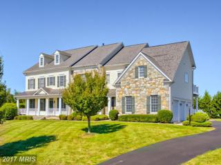 6802 Southridge Way, Middletown, MD 21769 (#FR9926427) :: Pearson Smith Realty