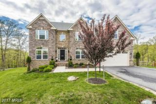 9808 Accipiter Court, New Market, MD 21774 (#FR9928474) :: Pearson Smith Realty